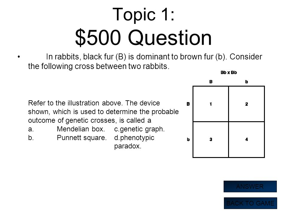 Topic 1: $500 Question In rabbits, black fur (B) is dominant to brown fur (b). Consider the following cross between two rabbits.