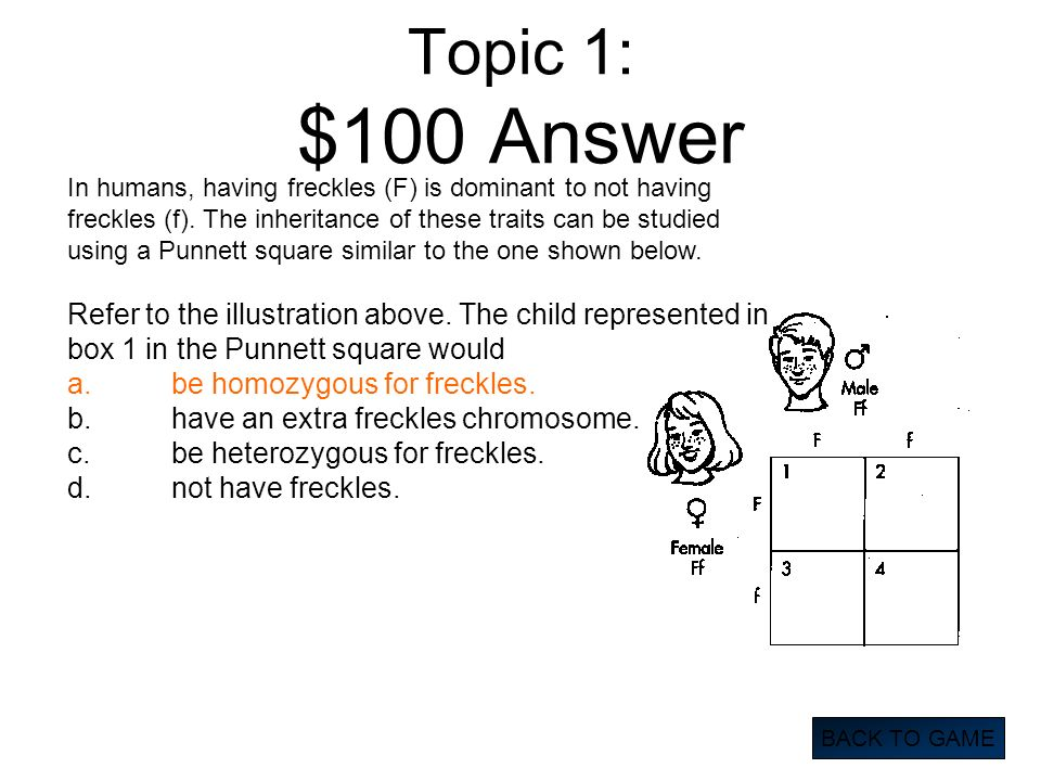 Topic 1: $100 Answer