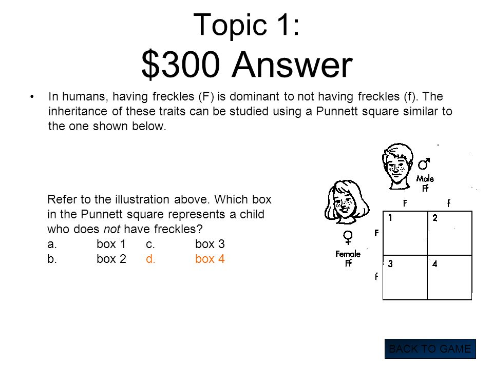 Topic 1: $300 Answer