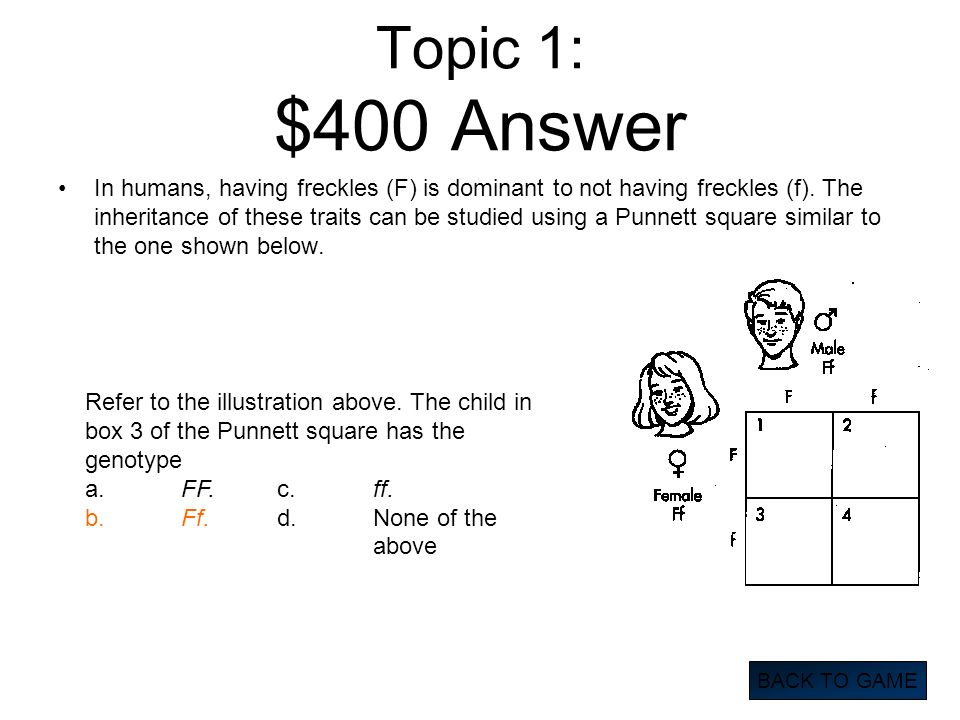 Topic 1: $400 Answer