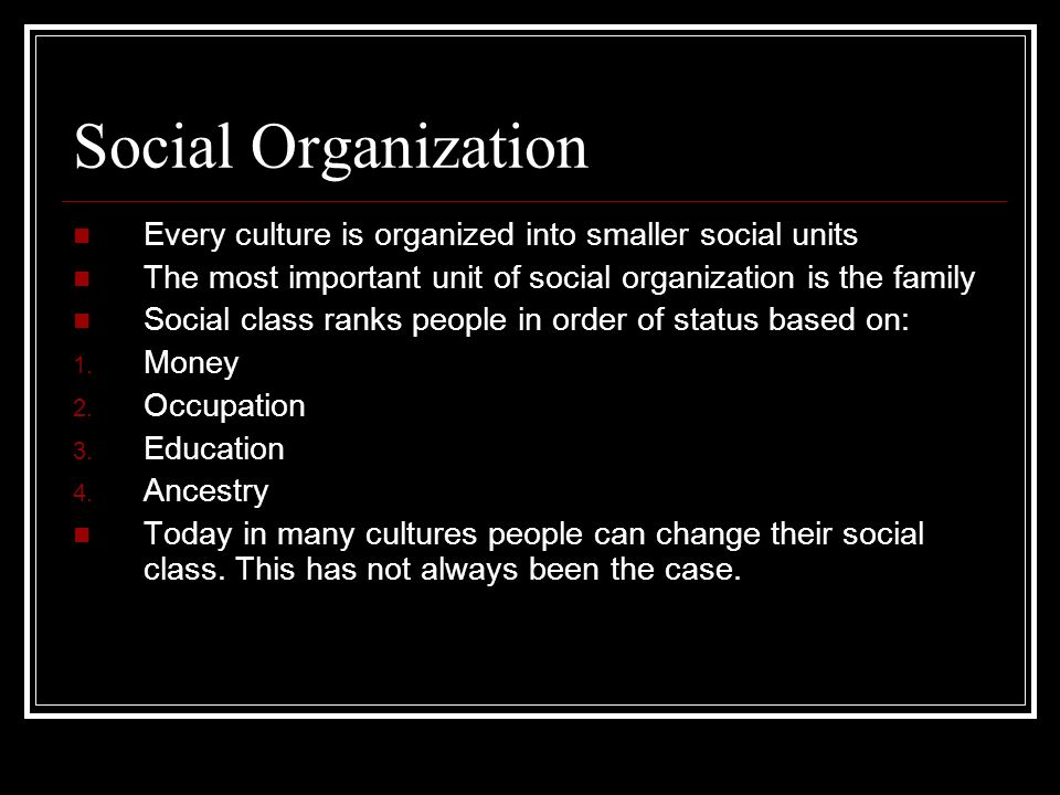 Social Organization Every culture is organized into smaller social units. The most important unit of social organization is the family.