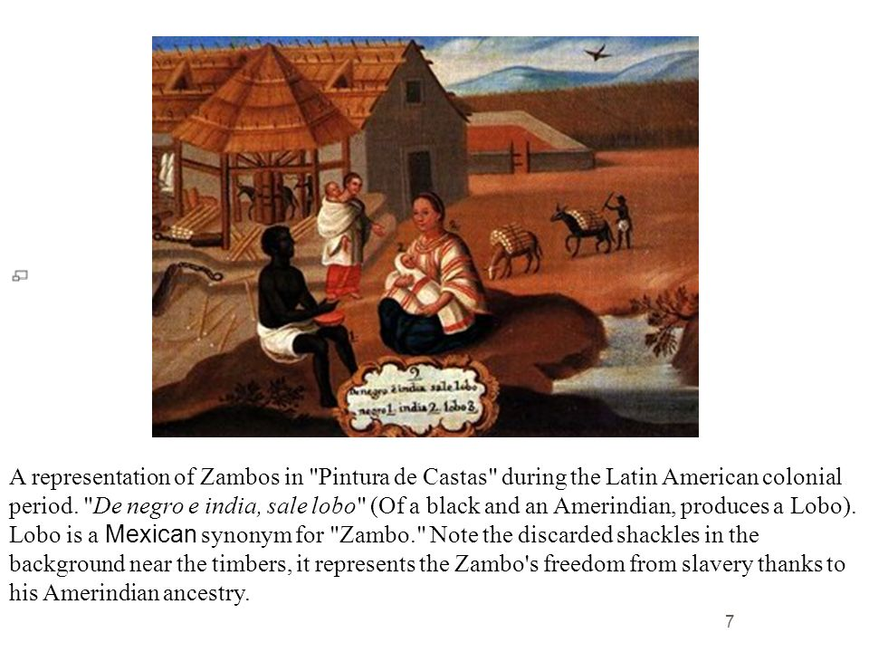 A representation of Zambos in Pintura de Castas during the Latin American colonial period.