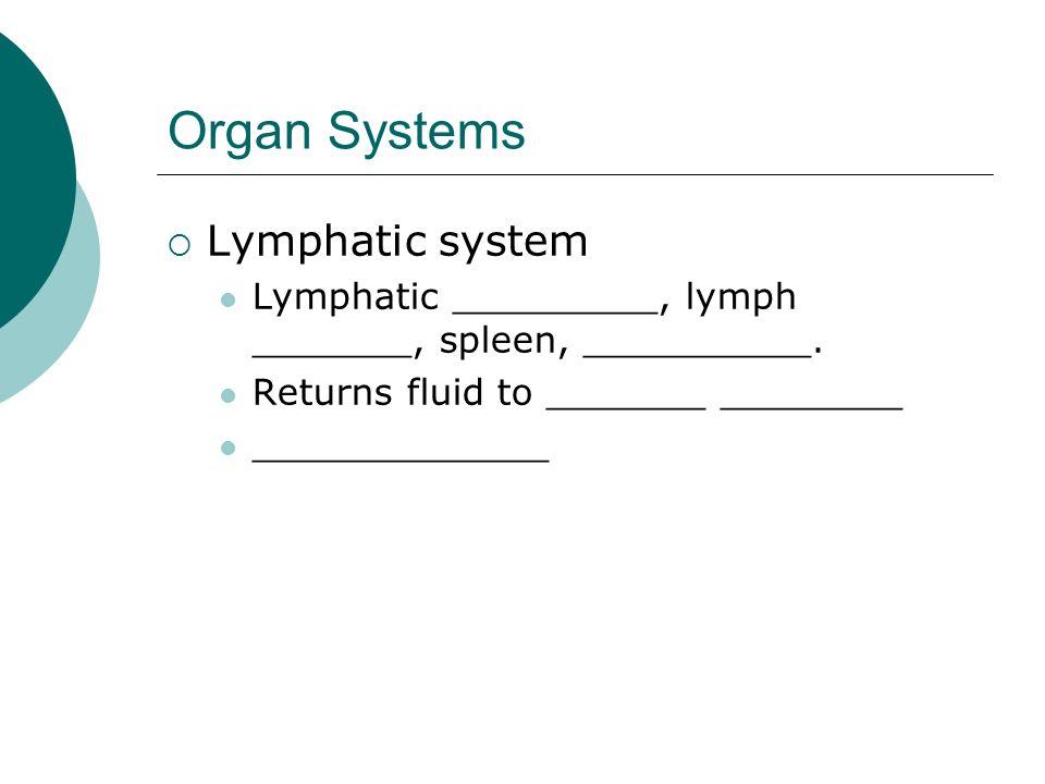 Organ Systems Lymphatic system