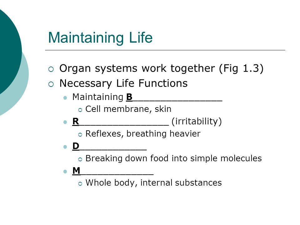 Maintaining Life Organ systems work together (Fig 1.3)