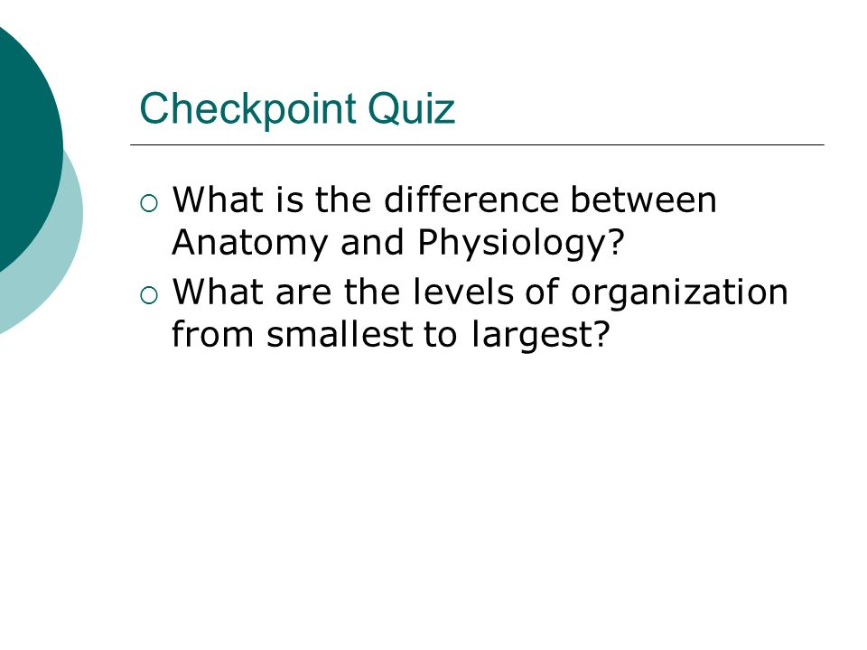 Checkpoint Quiz What is the difference between Anatomy and Physiology