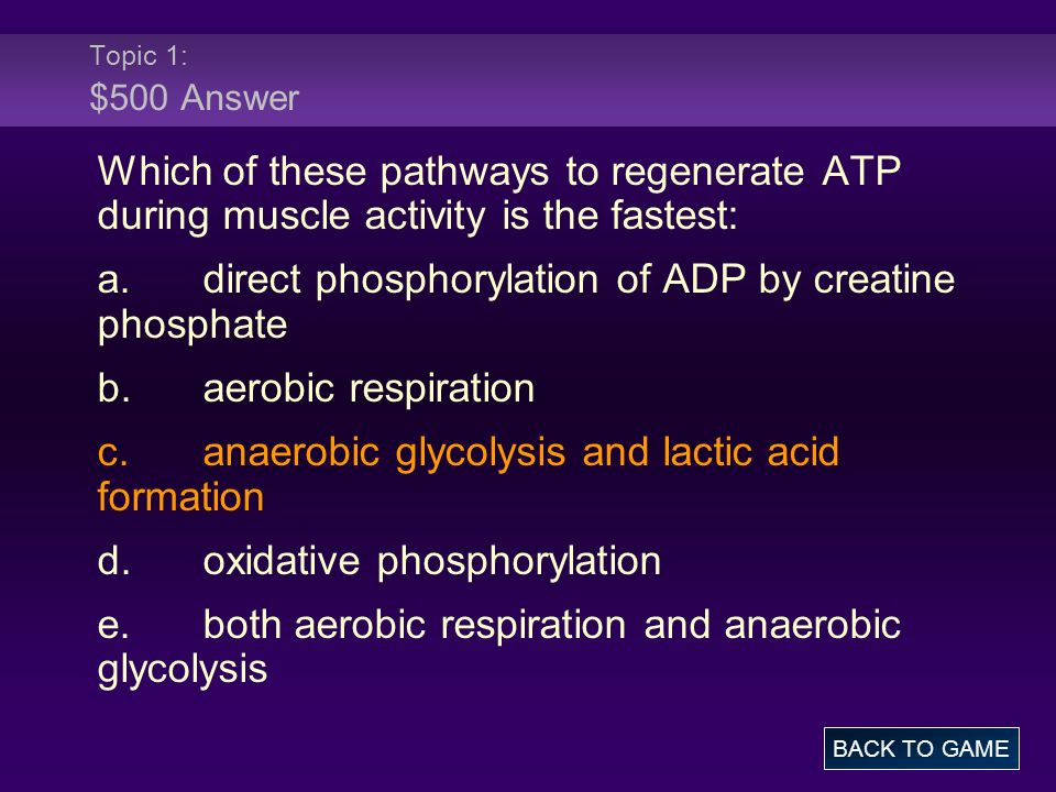 a. direct phosphorylation of ADP by creatine phosphate