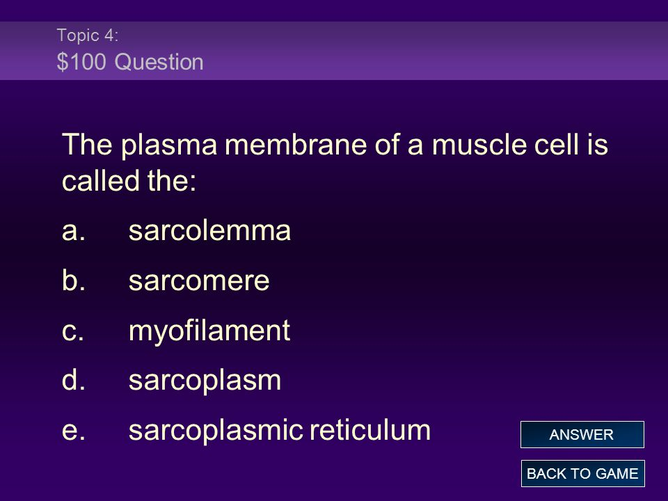 The plasma membrane of a muscle cell is called the: a. sarcolemma