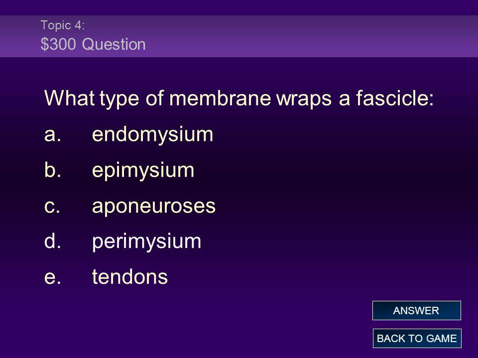 What type of membrane wraps a fascicle: a. endomysium b. epimysium