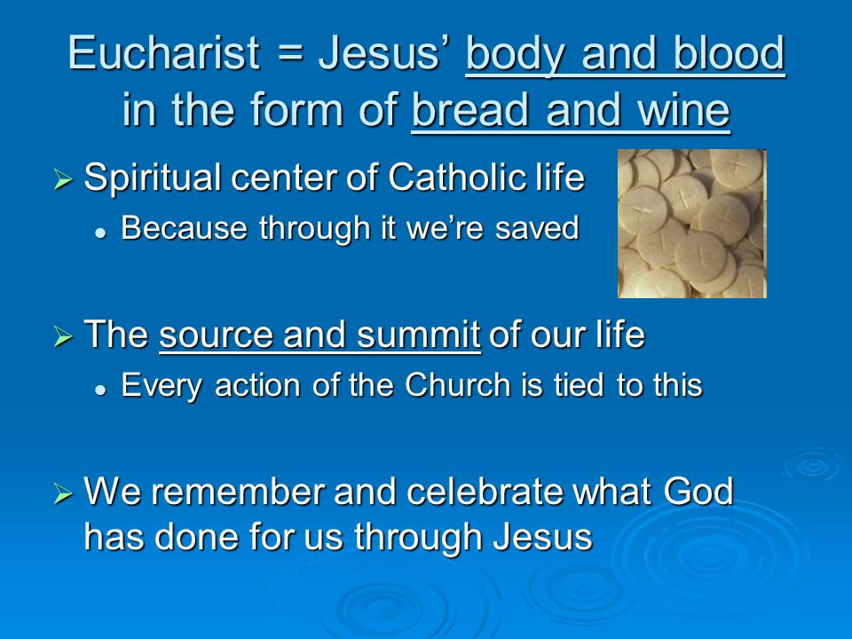 Eucharist = Jesus' body and blood in the form of bread and wine