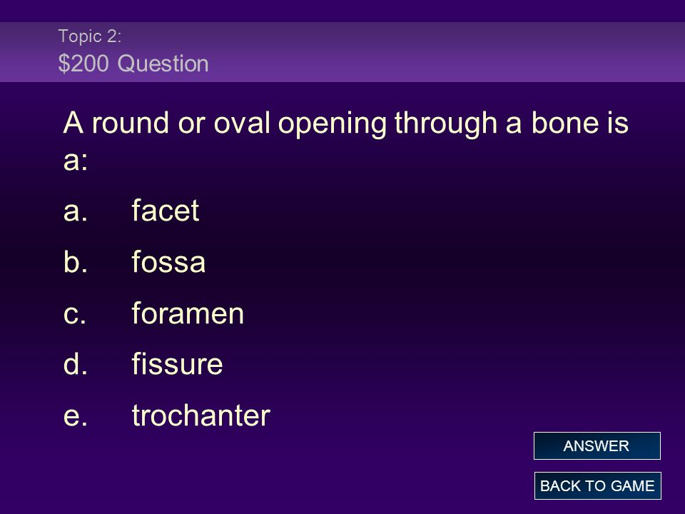 A round or oval opening through a bone is a: a. facet b. fossa