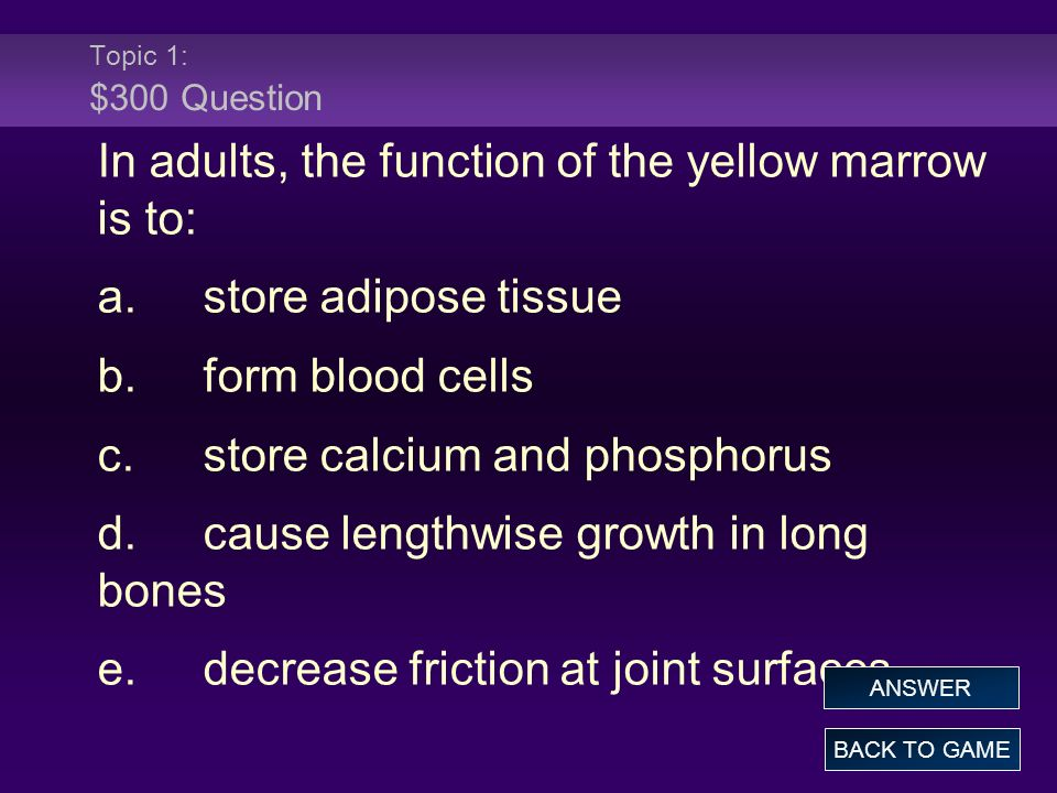 In adults, the function of the yellow marrow is to: