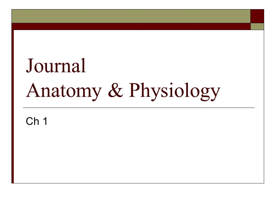 Journal Anatomy & Physiology