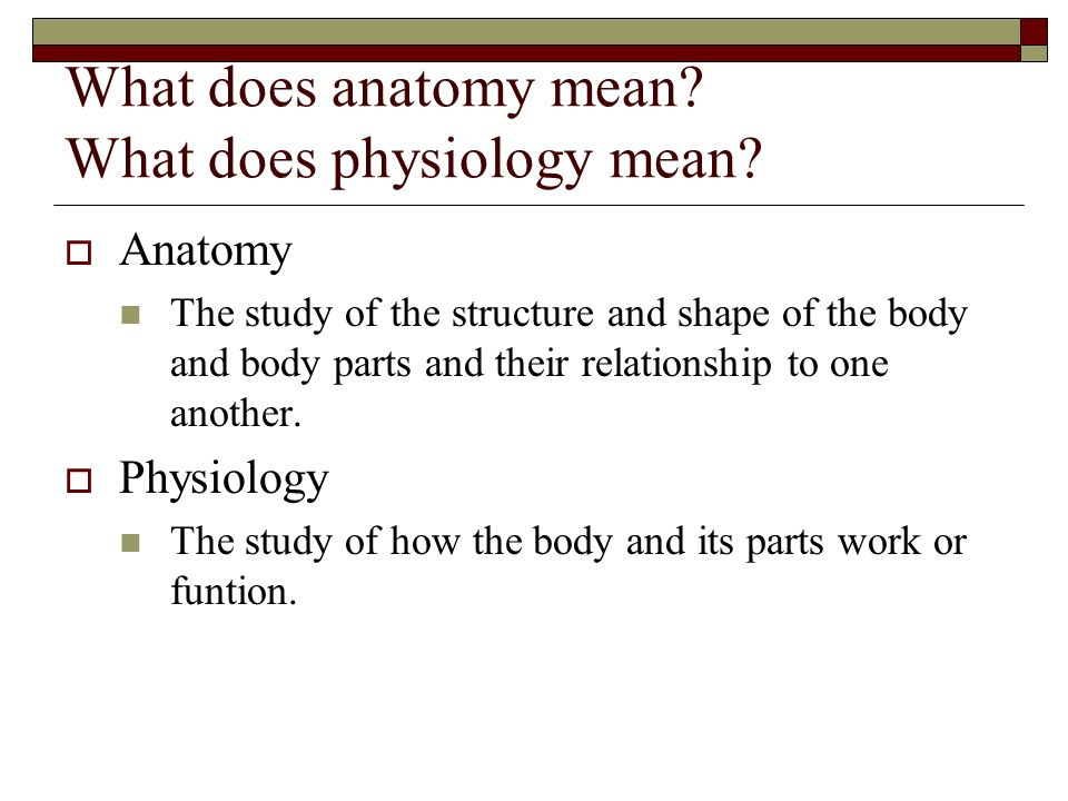 What does anatomy mean What does physiology mean