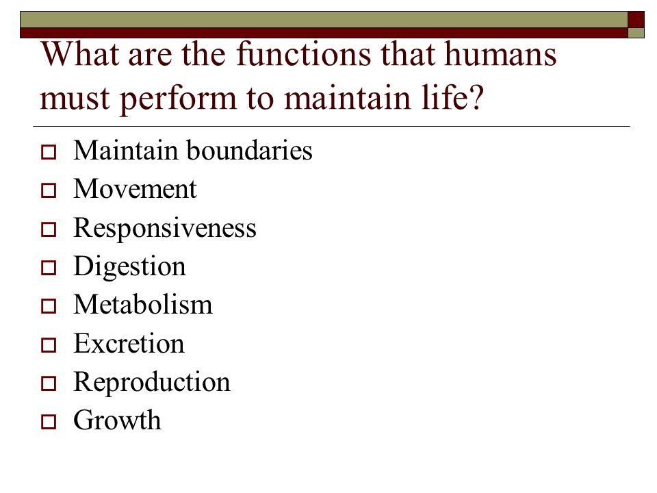 What are the functions that humans must perform to maintain life