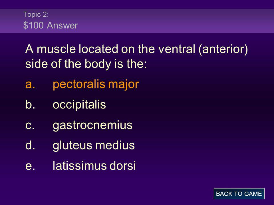 A muscle located on the ventral (anterior) side of the body is the: