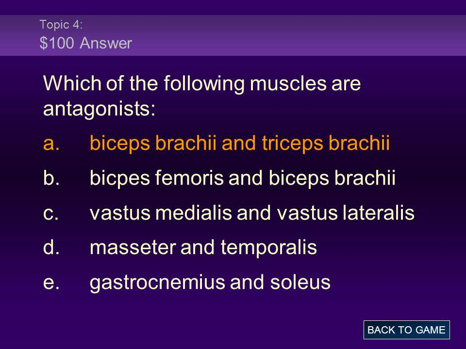 Which of the following muscles are antagonists: