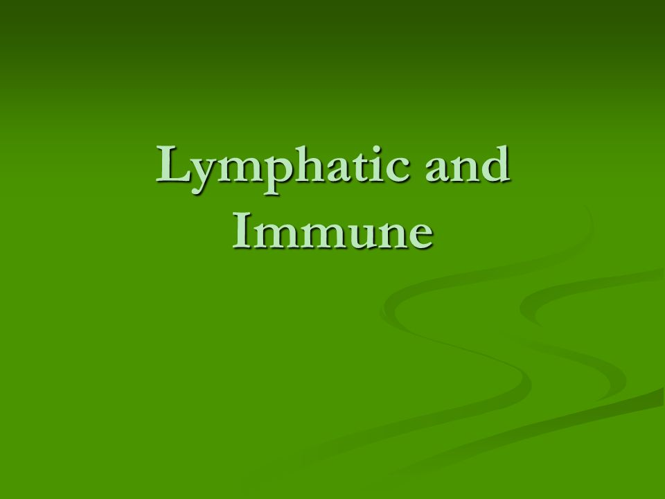 Lymphatic and Immune