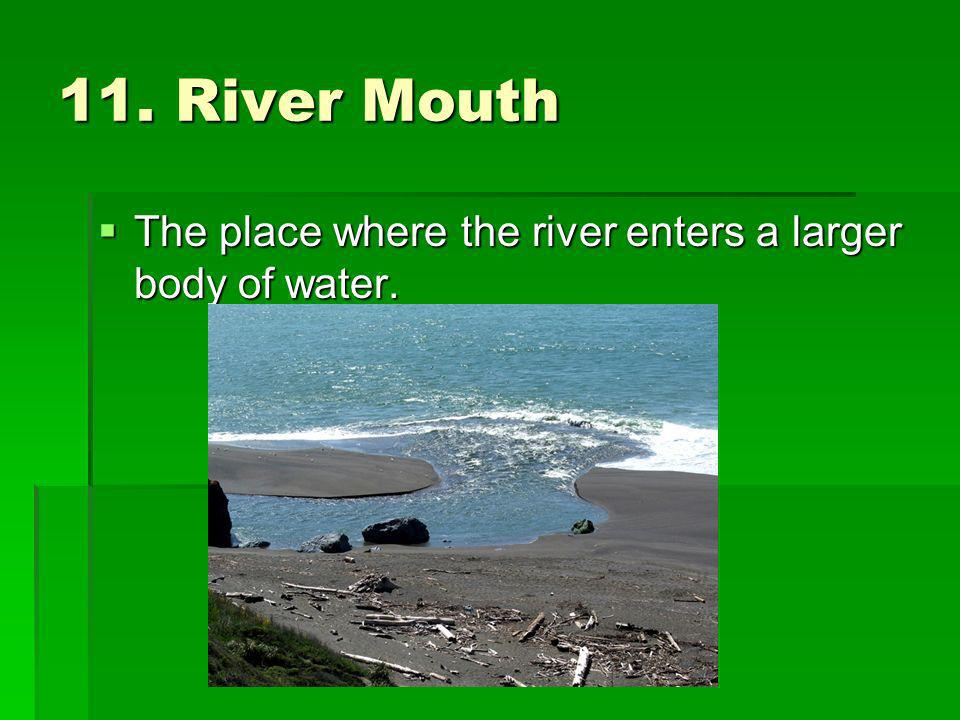 11. River Mouth The place where the river enters a larger body of water.