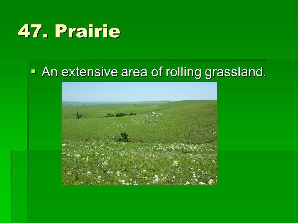 47. Prairie An extensive area of rolling grassland.