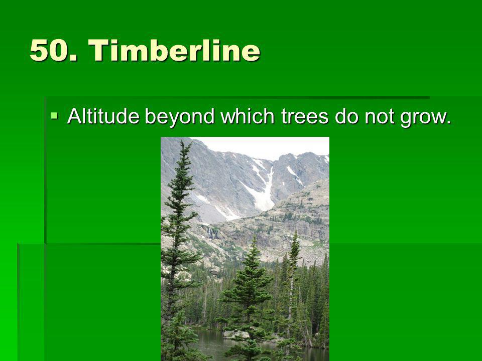 50. Timberline Altitude beyond which trees do not grow.