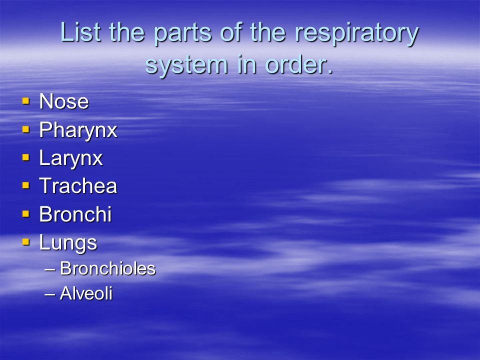 List the parts of the respiratory system in order.