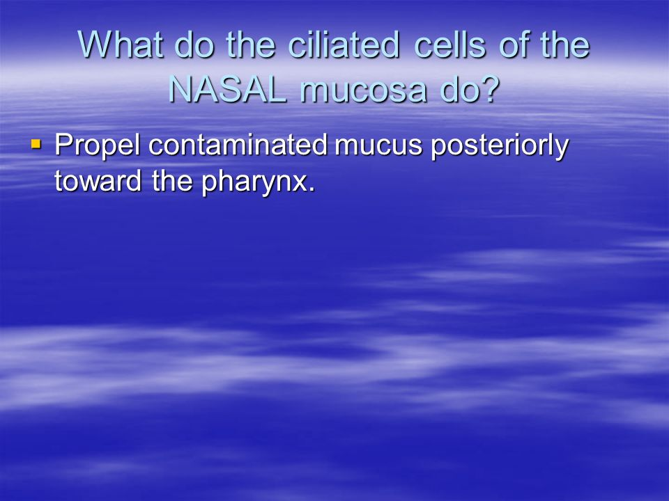 What do the ciliated cells of the NASAL mucosa do