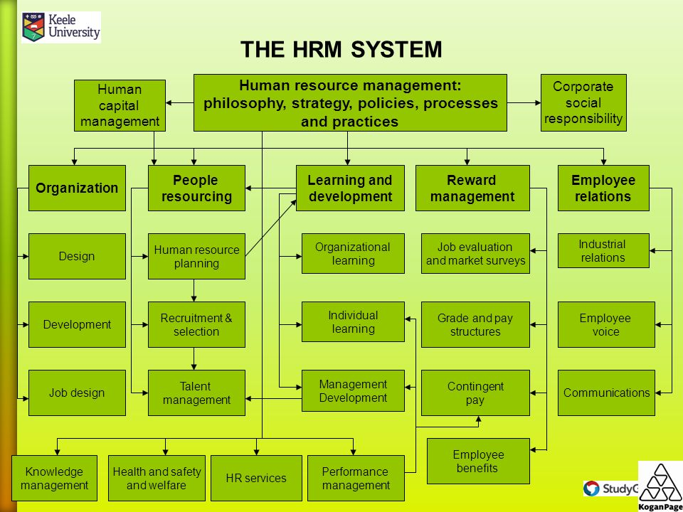Human Resource Management Concepts And Theories Ppt Download