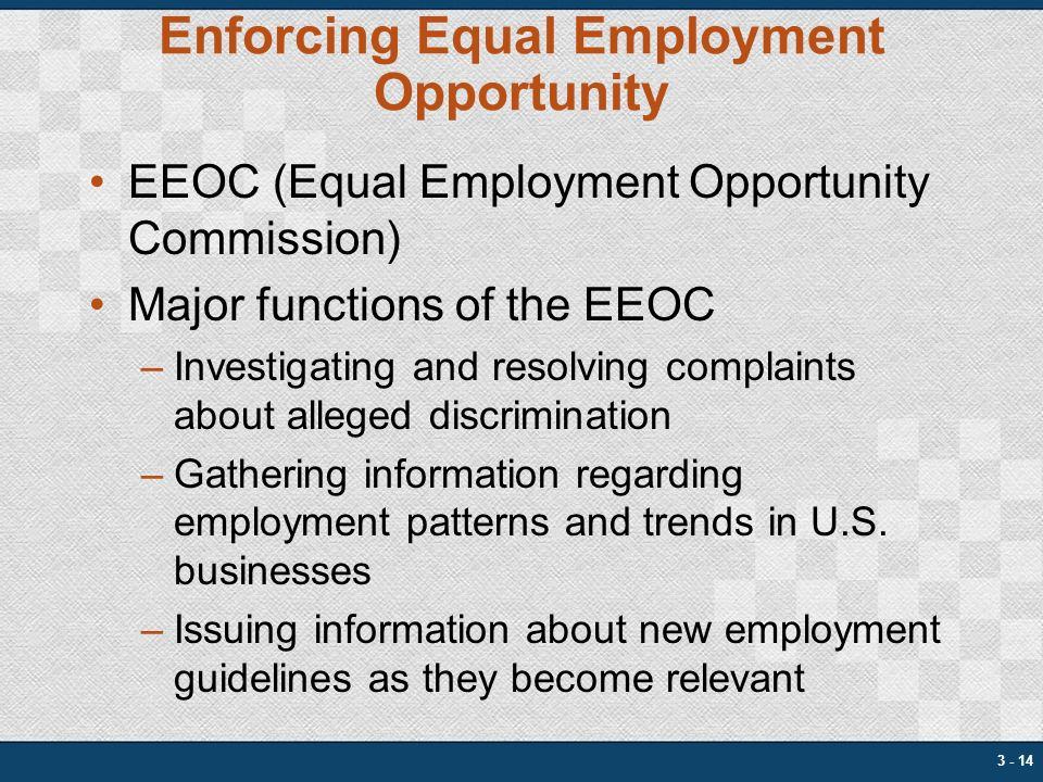 equal employment Equal employment opportunity office carol lunsford, acting eeo director mission the equal employment opportunity office provides its customers with timely, relevant, and accurate strategies to create and maintain a culture of inclusion and fairness throughout the dod oig workforce.