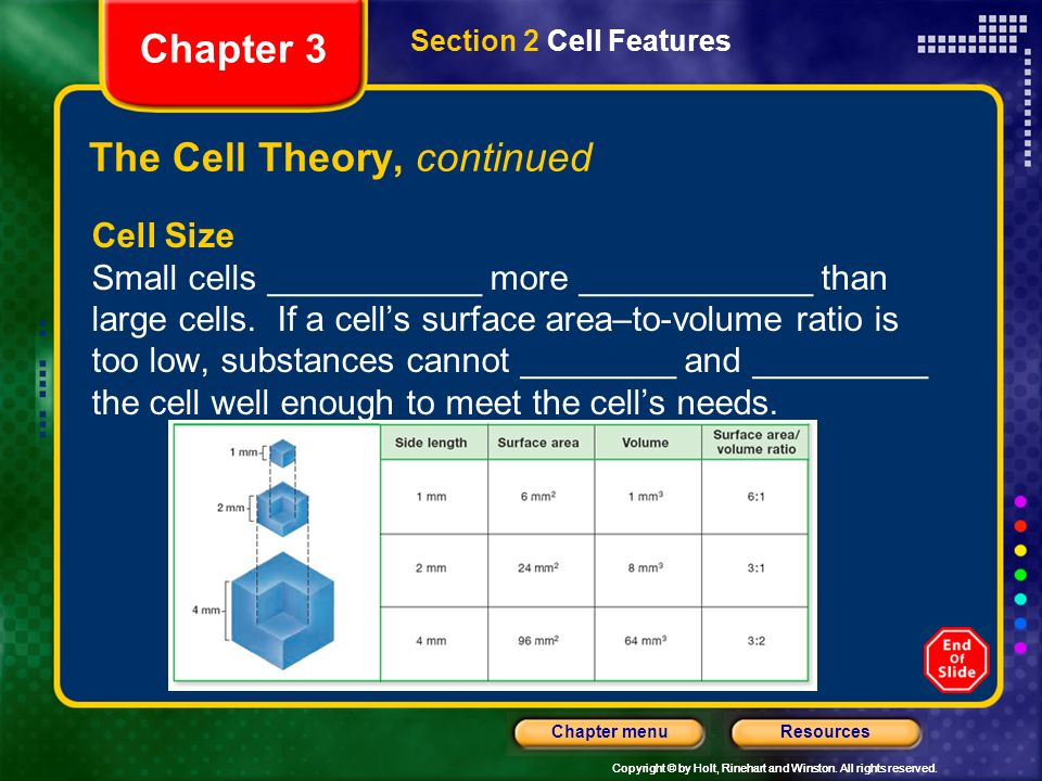The Cell Theory, continued