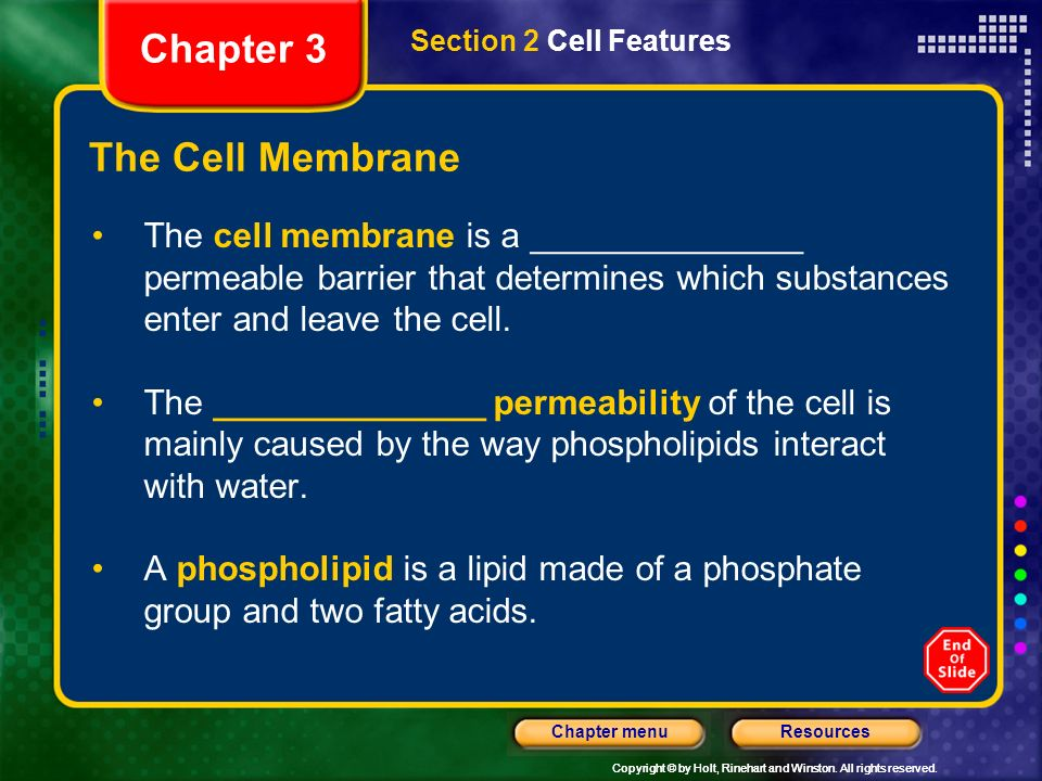 Chapter 3 The Cell Membrane