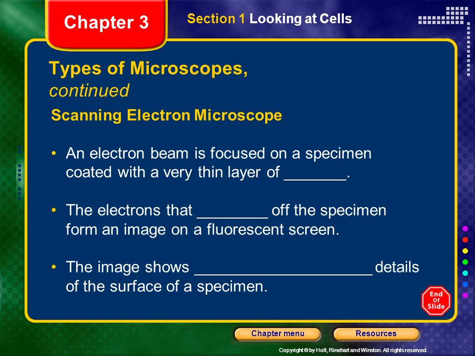 Types of Microscopes, continued