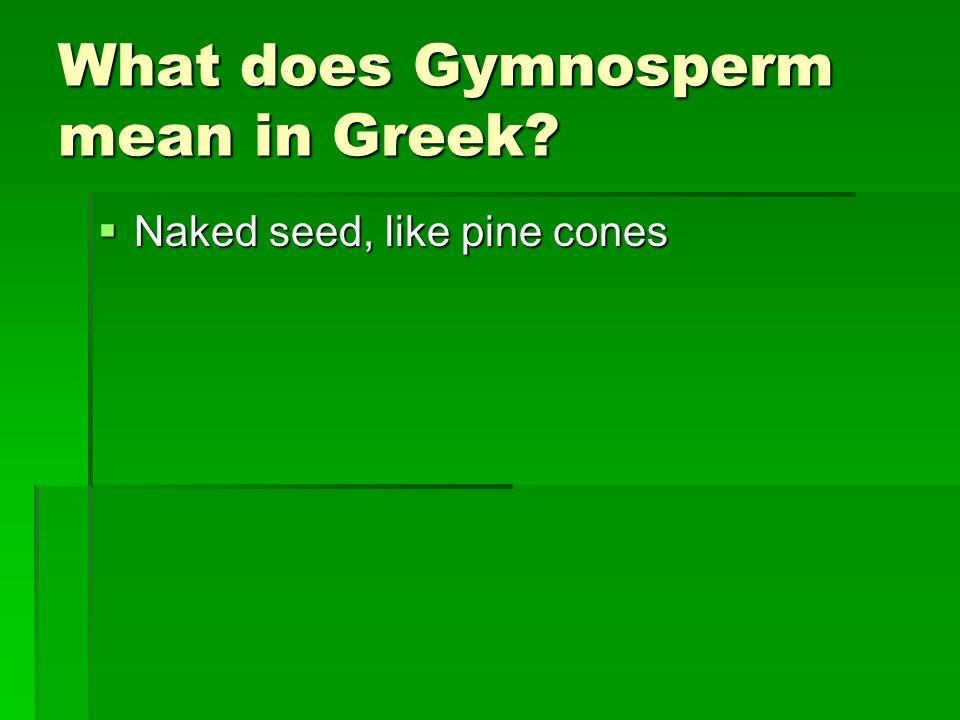 What does Gymnosperm mean in Greek