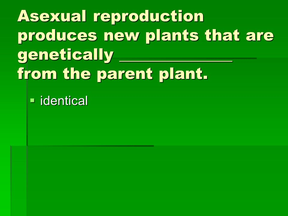 Asexual reproduction produces new plants that are genetically ______________ from the parent plant.