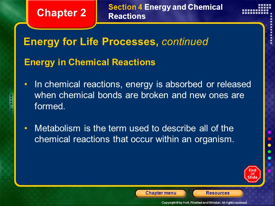 Energy for Life Processes, continued