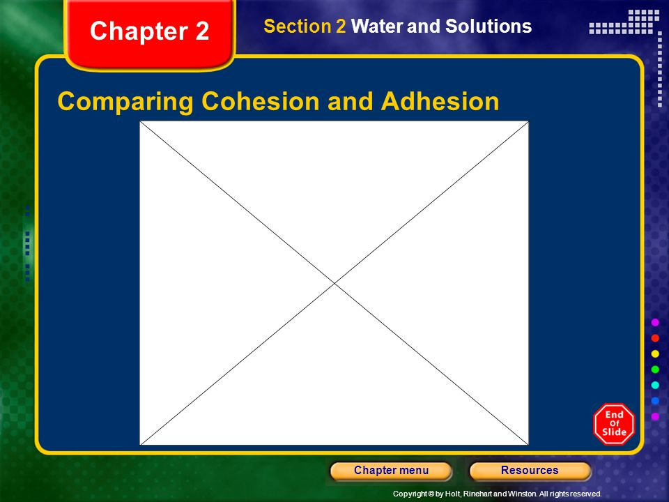 Comparing Cohesion and Adhesion