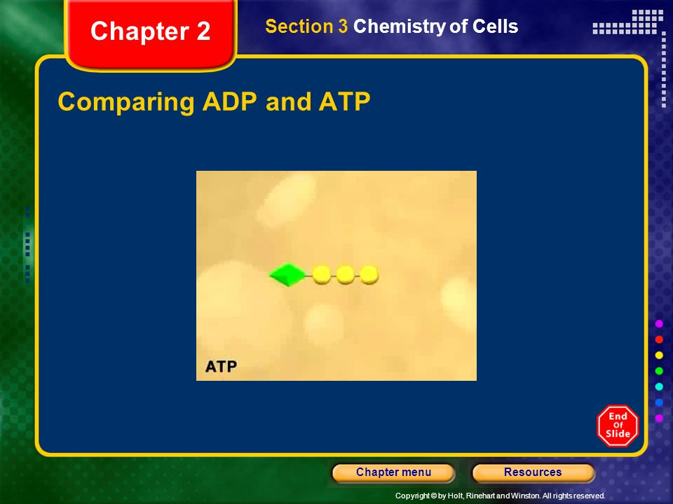 Chapter 2 Section 3 Chemistry of Cells Comparing ADP and ATP