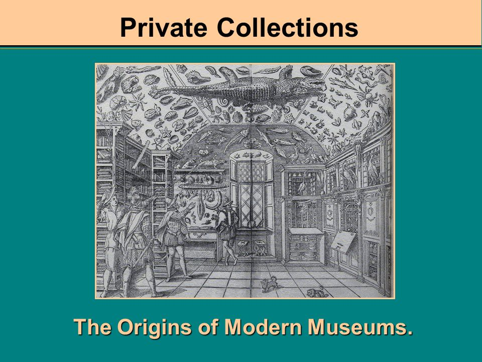 The Origins of Modern Museums.