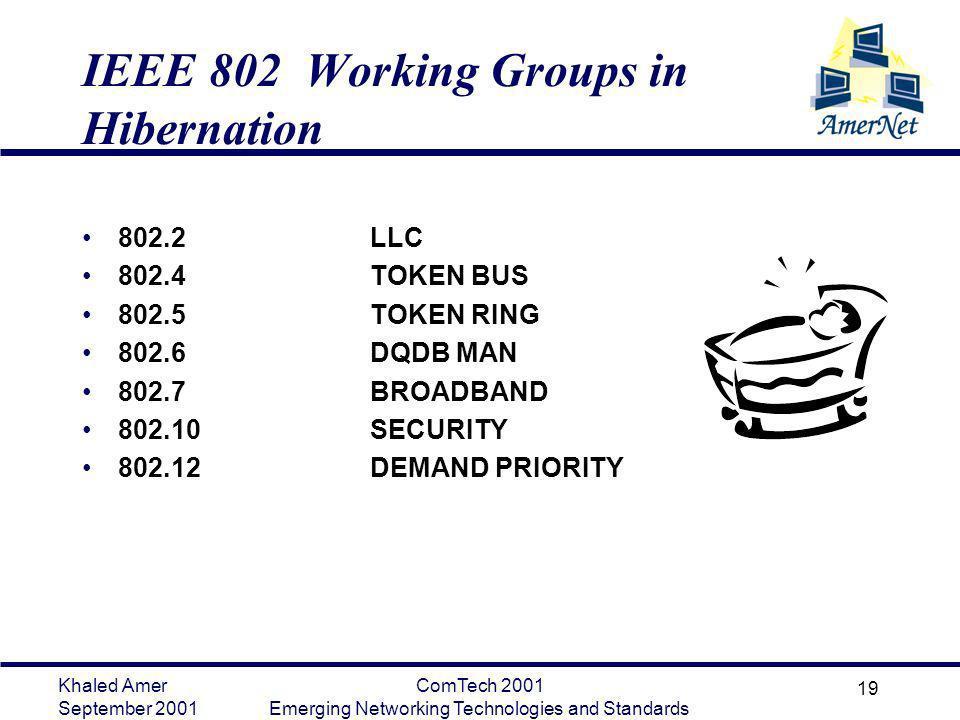 IEEE 802 Working Groups in Hibernation