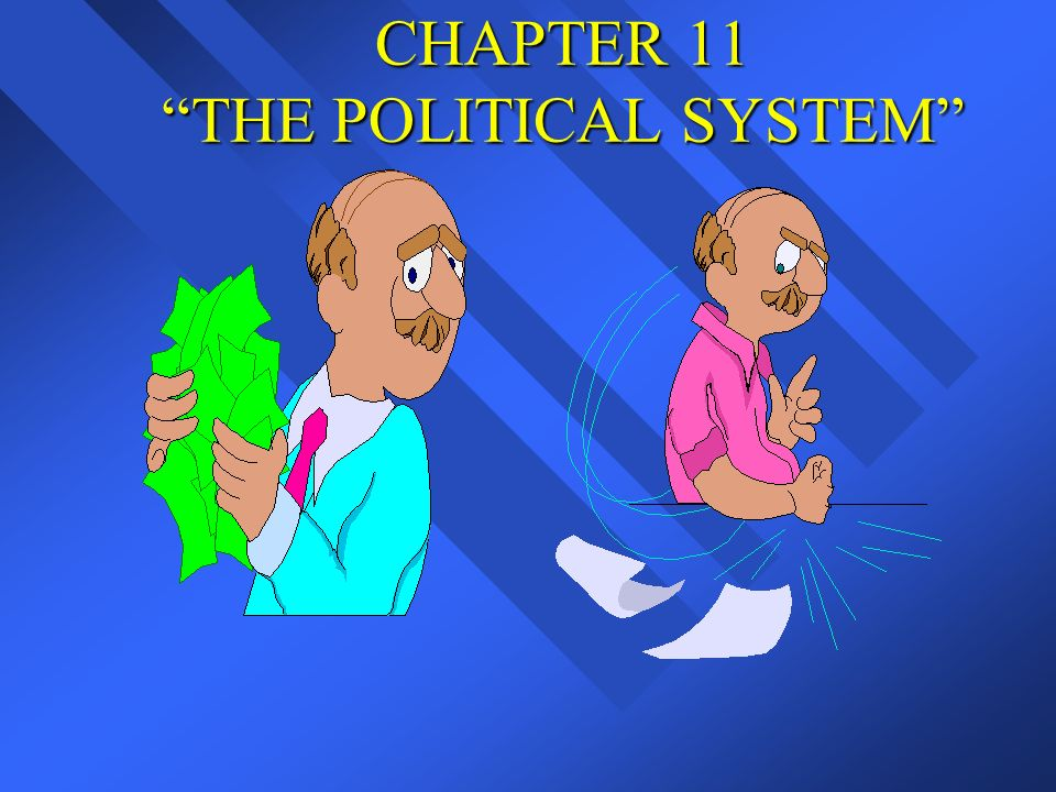 CHAPTER 11 THE POLITICAL SYSTEM