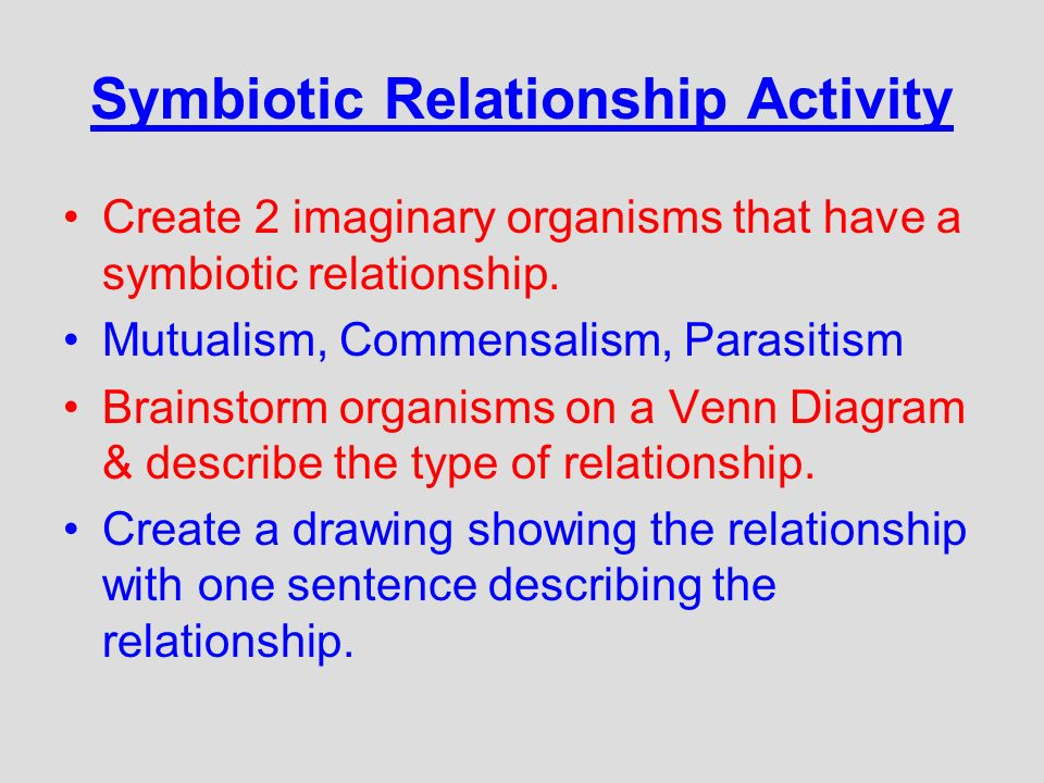 examples of relationship organisms