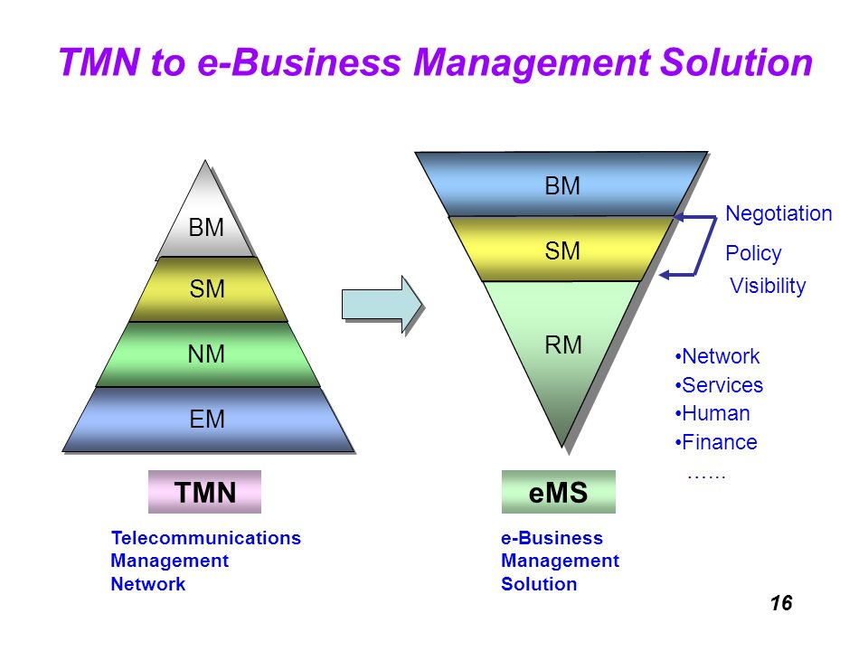 TMN to e-Business Management Solution