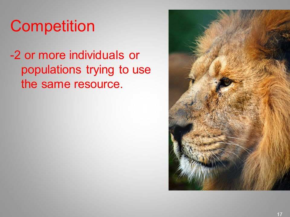 Competition -2 or more individuals or populations trying to use the same resource.