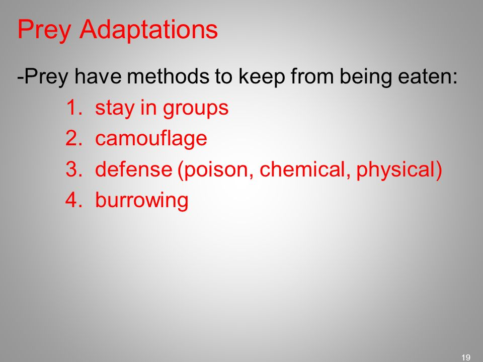 Prey Adaptations -Prey have methods to keep from being eaten: 1.