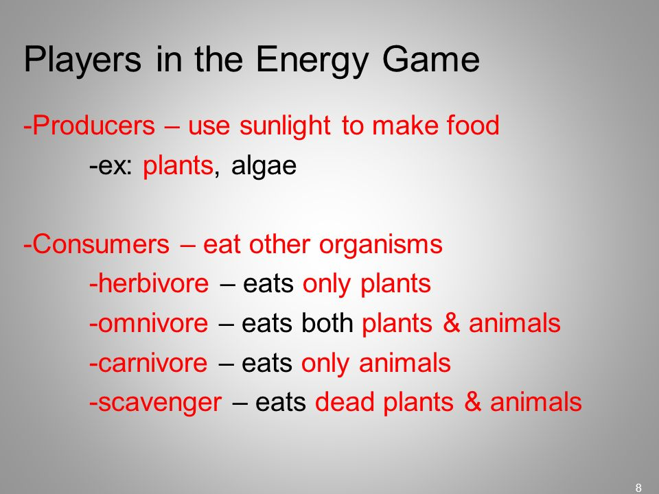 Players in the Energy Game