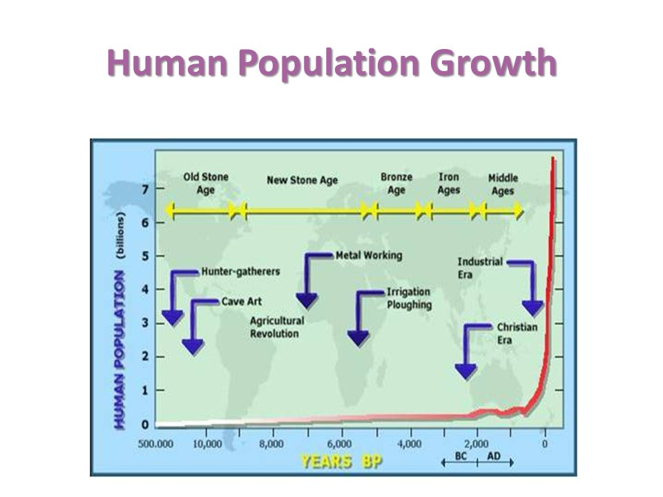 population growth and food supply The ipcc wgii ar5 report only deals with population growth tangentially, but it  has a lot of information on the world's food supply the wgii.