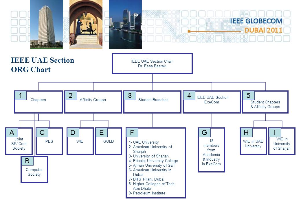 IEEE UAE Section ORG Chart