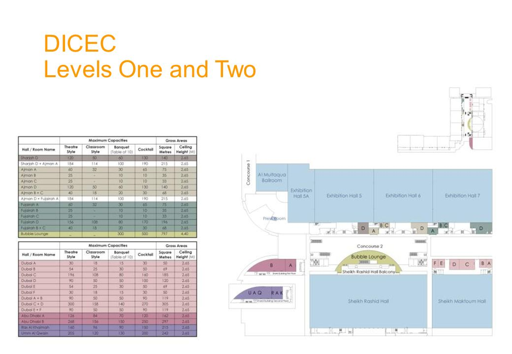 DICEC Levels One and Two