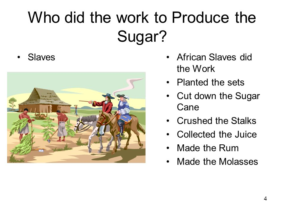 Who did the work to Produce the Sugar