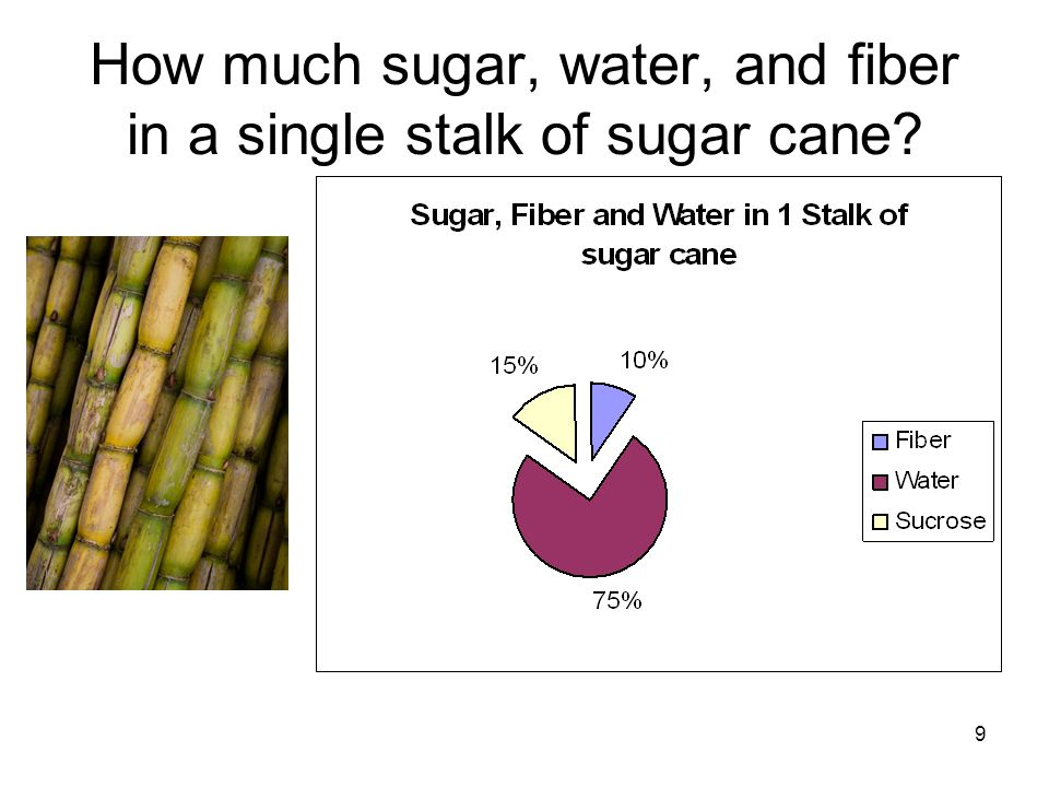 How much sugar, water, and fiber in a single stalk of sugar cane