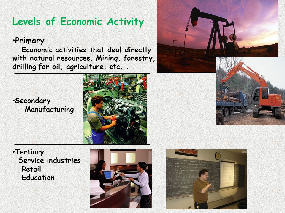 levels economic activity Levels of economic activity table of contents date title lesson # 9/16 cover page 10 9/16 political systems 11 9/18 economics 12 9/21 economic systems 13 9/22 levels.
